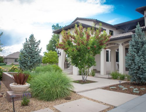 Boost Curb Appeal with Colorado Landscaping Services