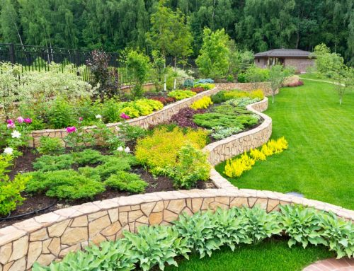Landscaping Design Trends in 2020