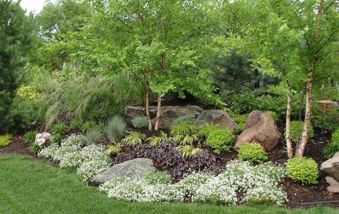 How to Create Outdoor Landscaping Privacy for the Home