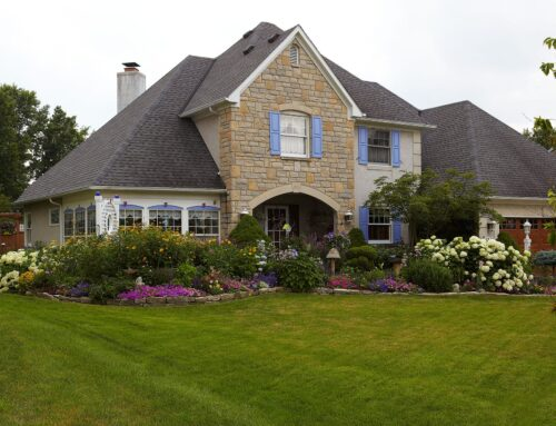 Using Native Plants In Front Yard Landscaping