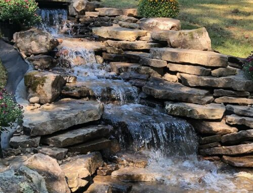Benefits of Adding a Water Feature
