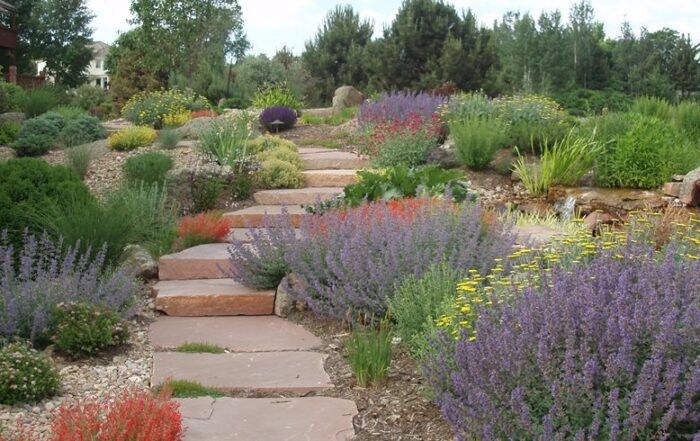 What Is Xeriscape Landscaping?